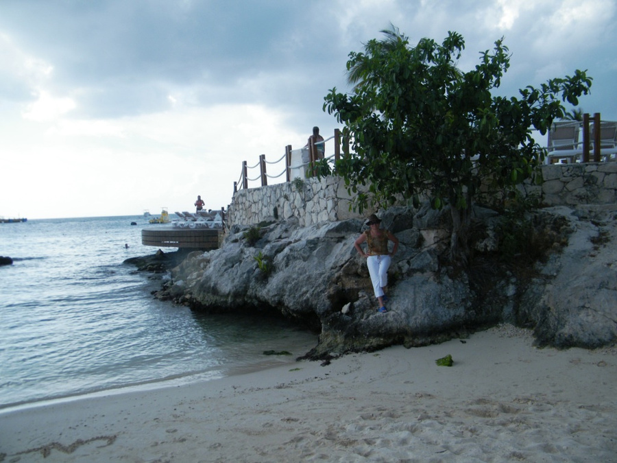 Кораллы на пляже дайвинг-станции