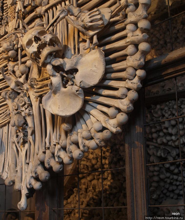 Фрагмент герба Шварценбергов с клюющим череп вороном