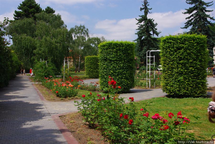 Розарий возле Пражской Обсерватории