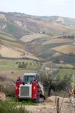 Дом был куплен несколько лет назад всего за 60 тысяч евро, с 1,5 гектарами земли. Вокруг уже много домов, купленных англичанами и другими состоятельными европейцами. Состояние дома было не очень, поэтому до сих пор есть что довести до ума. Но уже очень уютно. В Италии вообще очень много маленькой техники. Маленькие строительные краны. Маленькие тракторы.
