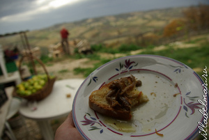 Хлеб, баклажаны под маслом