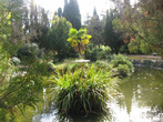 Райский уголок Форосского парка