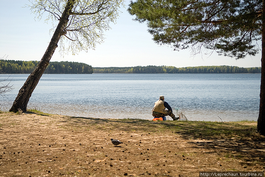 Озеро Висагинас