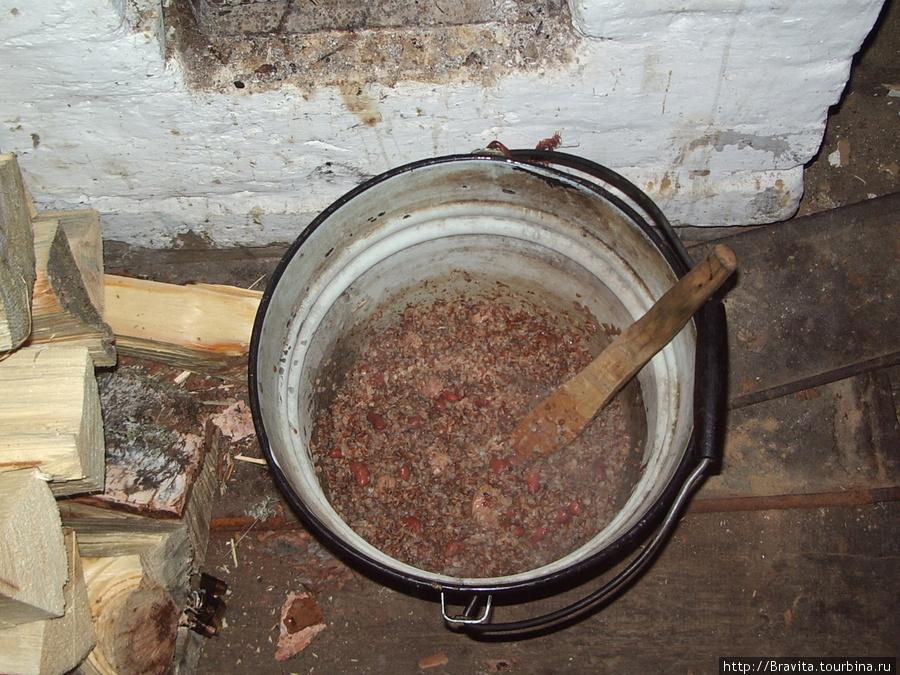 Приготовление пищи в походных условиях.