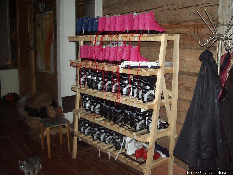Зимой на базе функционирует каток. За символическую плату можно взять напрокат коньки — розовые или синие для Ж, черные — для М :)