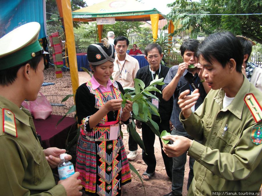 Luang Prabang Ethnic Cultural Festival, 29-31 October 2010