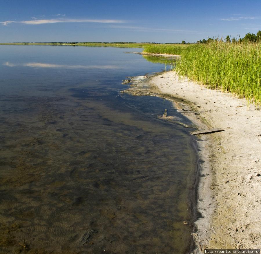 Озеро Медвежье в Курганск