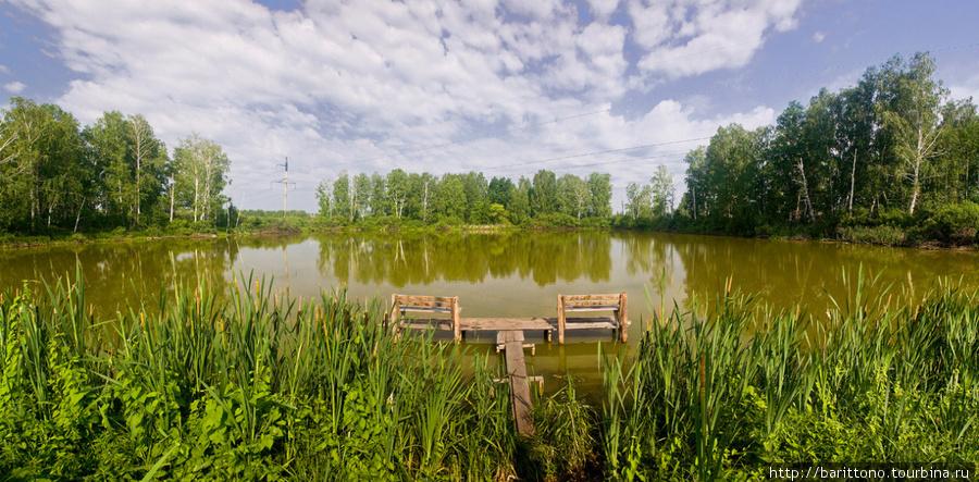 Озеро у дороги