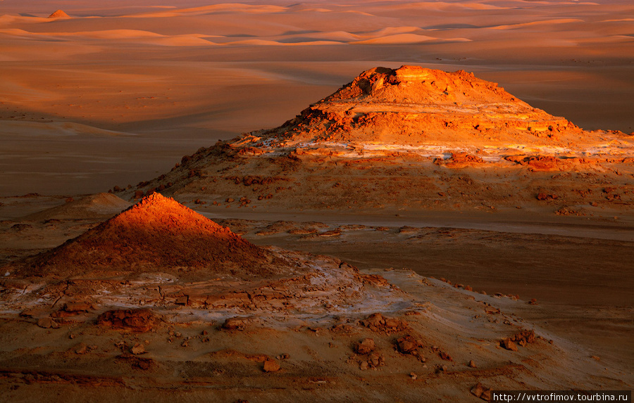 Great Sand Sea на закате — незабываемое зрелище Оазис Сива, Египет