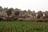 Огород на руинах Патары