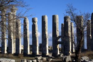 Колонны храма Зевса Олбайского