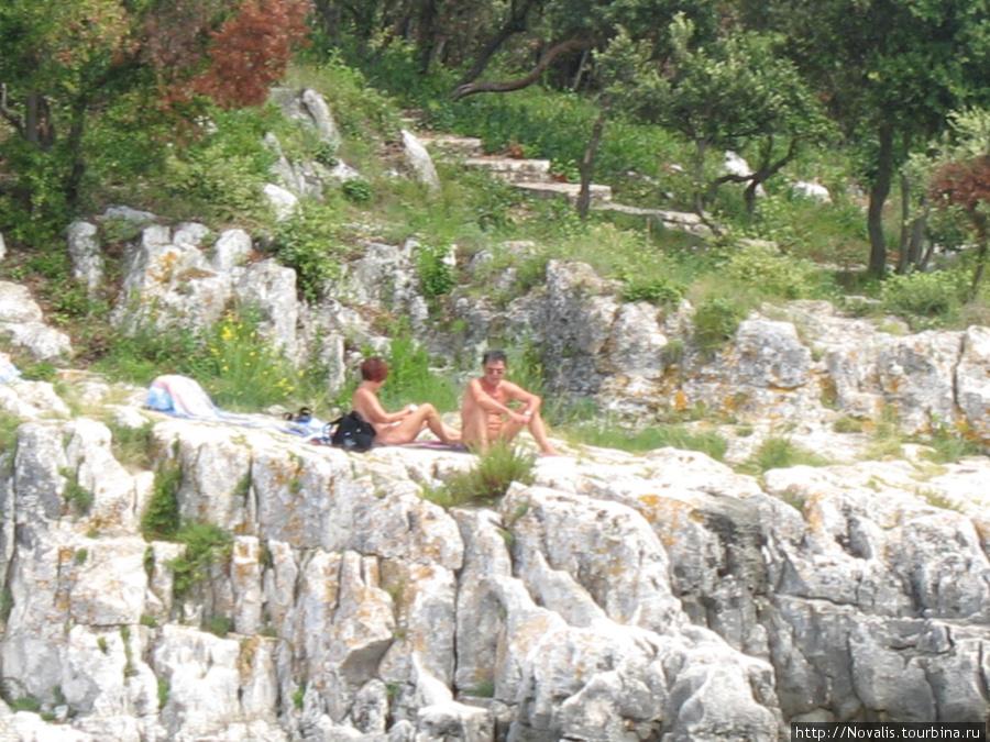 голыши на нудистских пляжах у Врсара