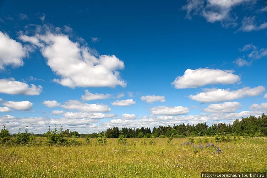 Где-то в восточной Литве