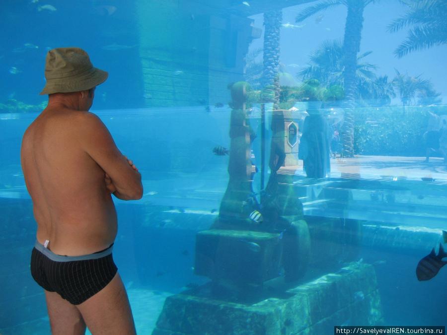 У аквариума.