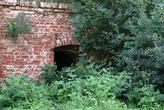 Руины в зарослях