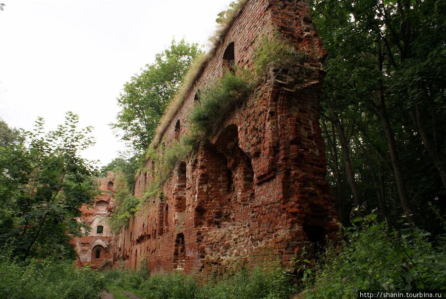 Замок Бальга Калининградская область, Россия