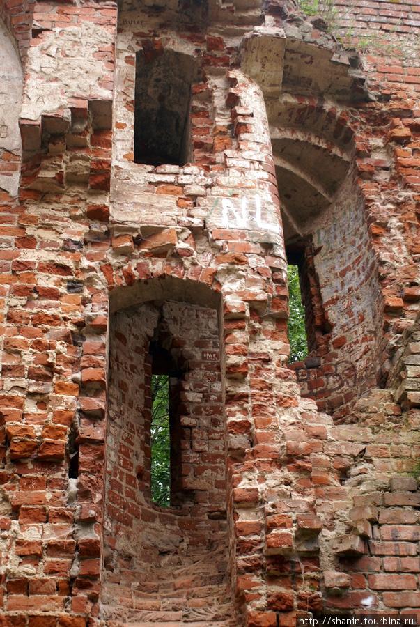 Стена замка Бальга Калининградская область, Россия