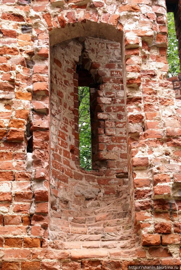 Окно замка Калининградская область, Россия