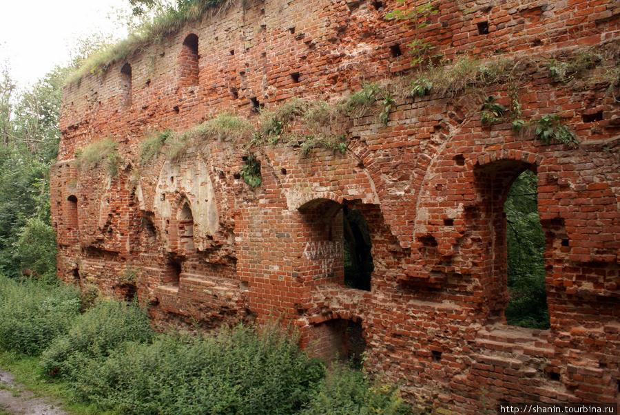 Стена замка Калининградская область, Россия