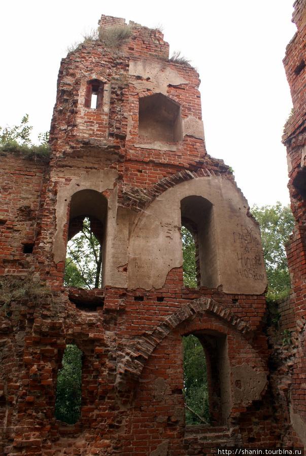 Руины замка Бальга Калининградская область, Россия