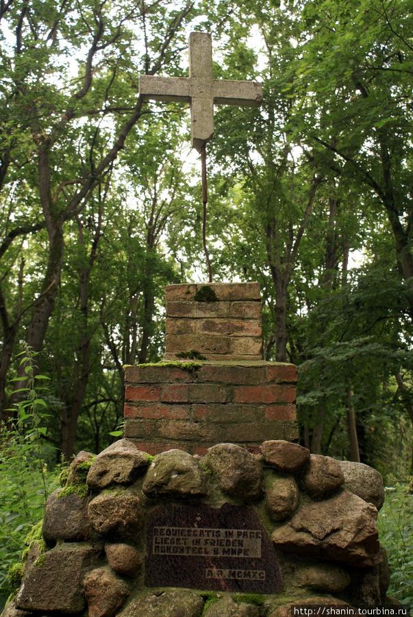 Памятник у замка Бальга Калининградская область, Россия