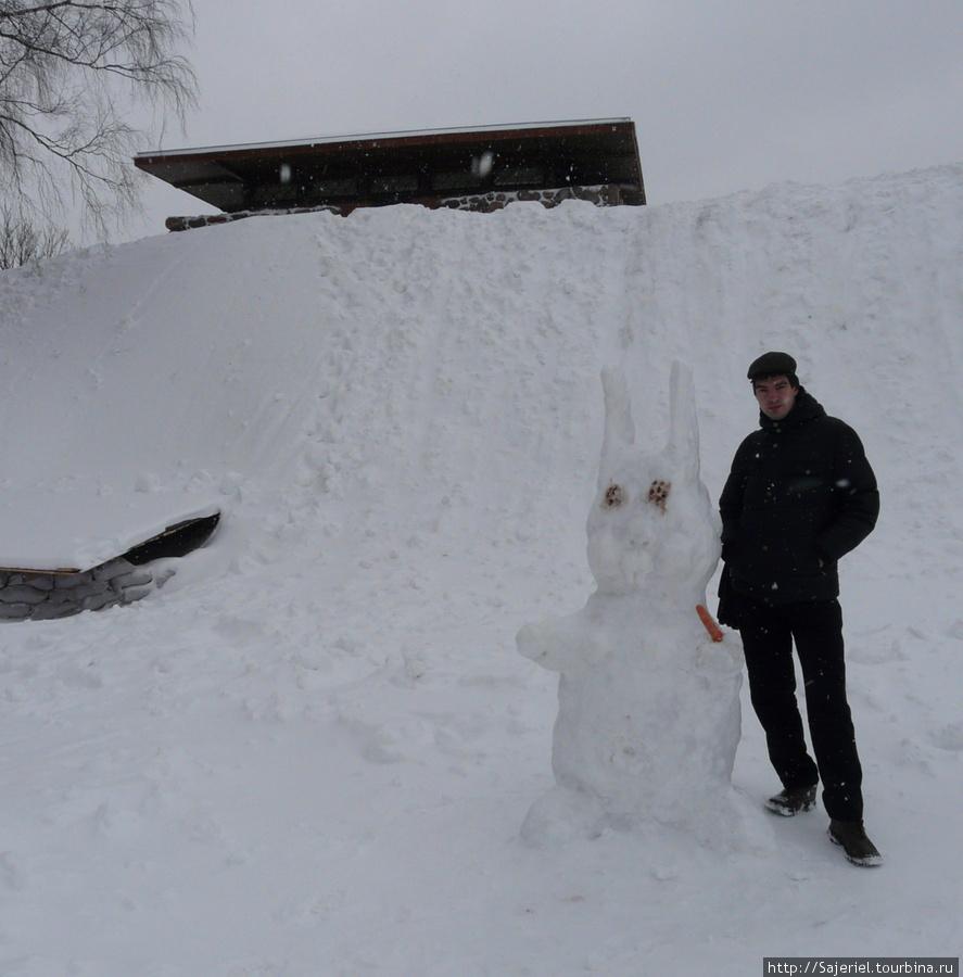 В Вильнюсе 2011 год — год именно такого кролика :)