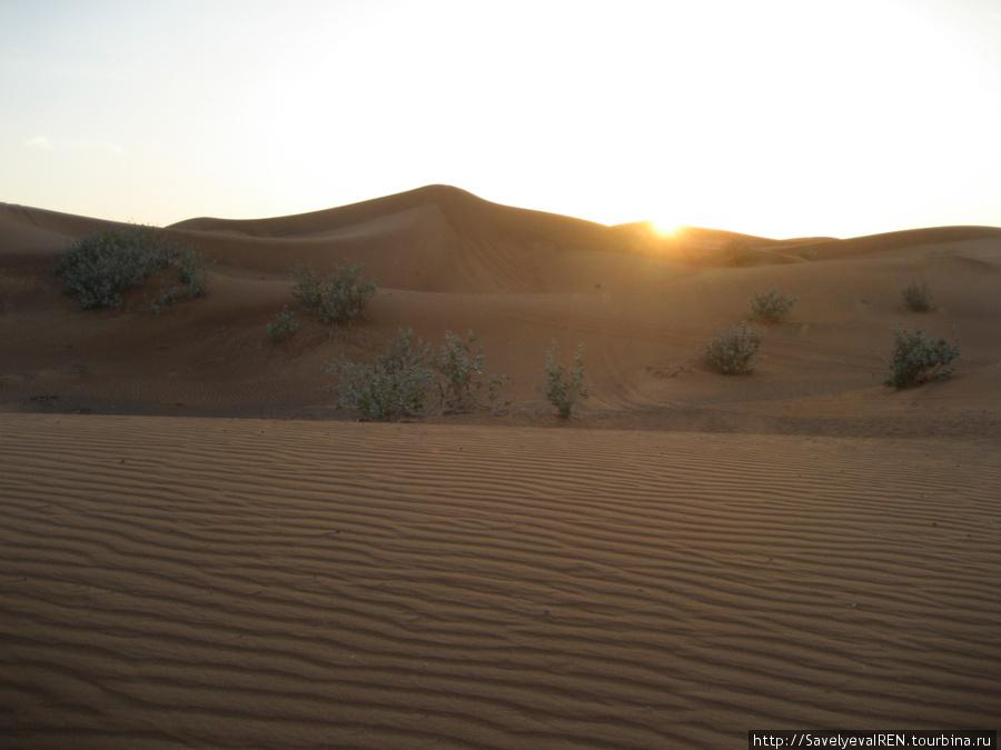 Закат в пустыне.