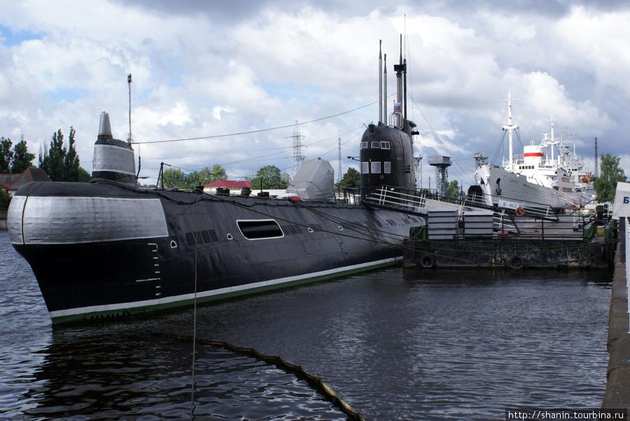 музей мирового океана подводная лодка в калининграде музей