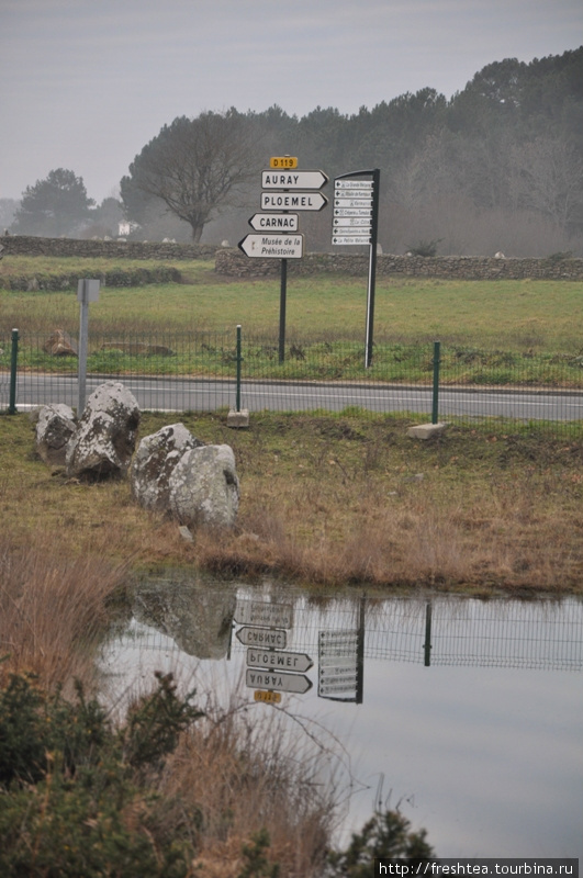 Всемирно известные нагроможения камней среди низин и пустошей южной Бретани начинаются как-то обыденно, прямо у шоссе. Мгновение ока — и ты с современной дороги переносишься в мир легенд. Сказывают, истории о короле Артуре сложили где-то в этих краях.