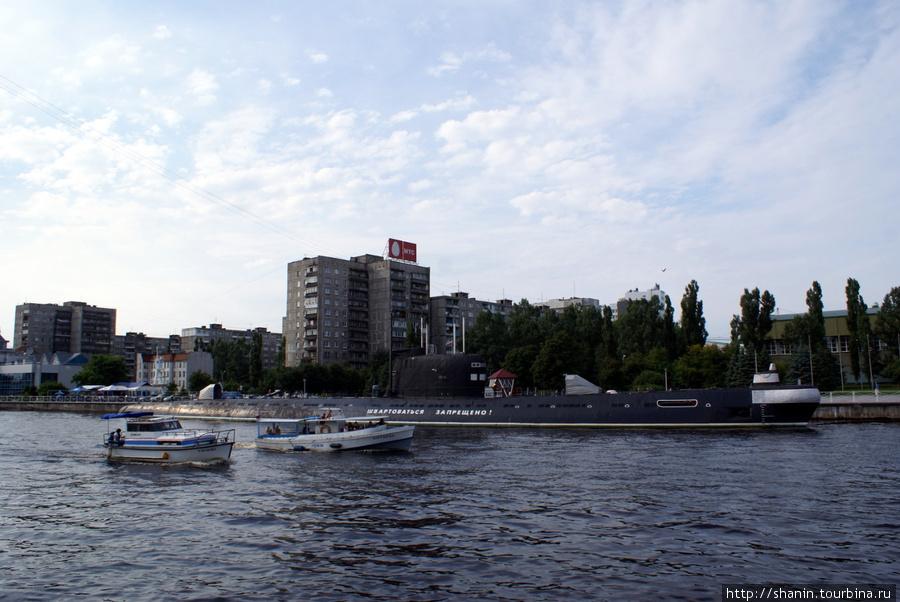 Река Преголя Калининград, Россия