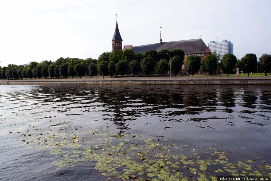 Остров Канта и Кафедральный собор Калининград, Россия