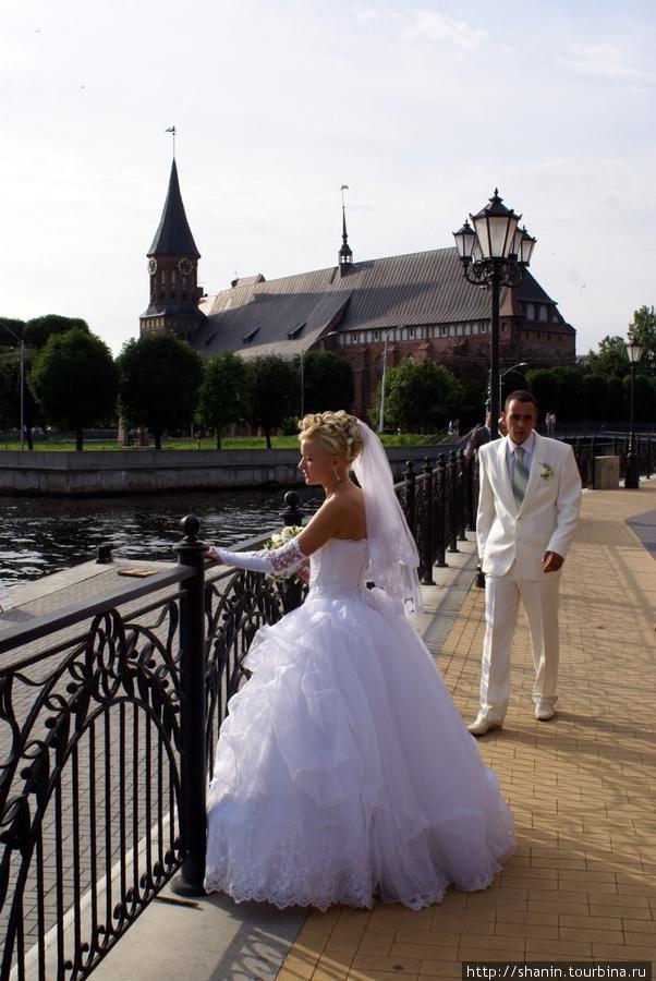 Свадьба на набережной Калининград, Россия