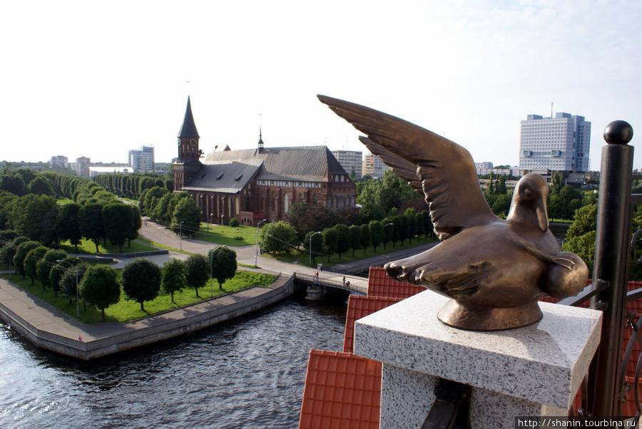 Вид с маяка в Рыбной деревне на остров Канта и Кафедральный собор Калоинигнграда Калининград, Россия